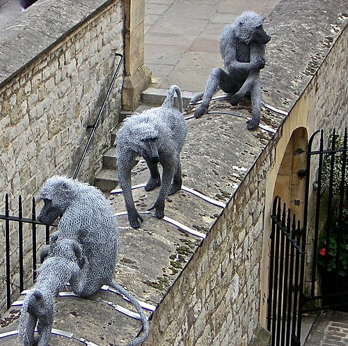 Baboons in the Tower. Realistic 3D animal sculpture by British artist Kendra Haste
