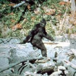 The two most famous examples are the Bigfoots or sasquatch of North America and the Yeti of the Himalayas.