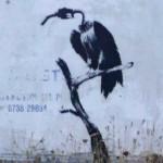 Environmental Message from English street artist Banksy