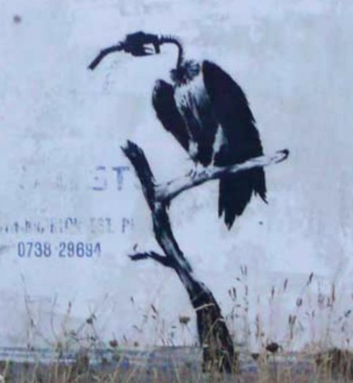 Environmental Message from English street artist Banksy