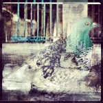 Pigeon. London captured and edited on mobile phones, with smartphone app Instagram