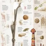 World best static infographics 2012