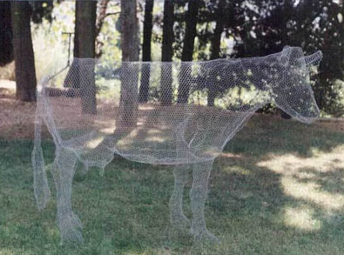A cow. Transparent 3D sculpture by Italian artist Benedetta Mori Ubaldini