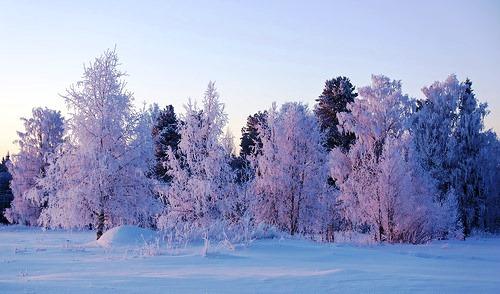 Beautiful winter images captured by Igor Podobaev. The village of Byzovoj (Byzovaya), Pechora district of the Komi Republic