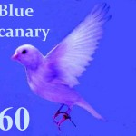 Blue Canary 60 years of history