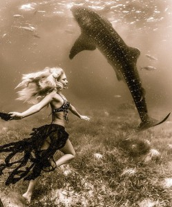 Photo-session with whale sharks. Beautiful fearless underwater models in the shoot with 30-foot-long whale sharks