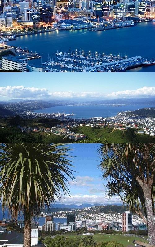 7. New Zealand