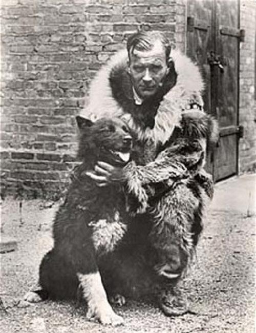 Heroic Siberian Husky Balto