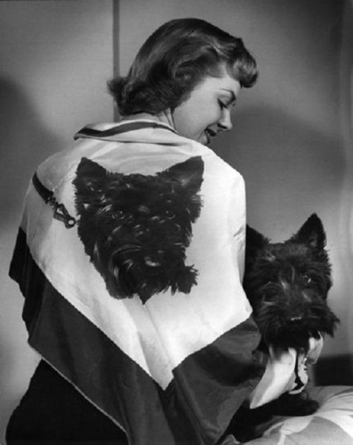 Vintage tech photographic fabrics