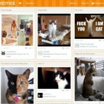 Catmoji world's first social network for cats