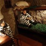 Museum of Prison Art