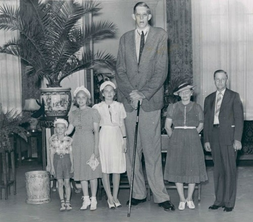 Robert Pershing Wadlow (February 22, 1918 – July 15, 1940)