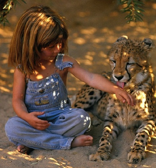 Tippi aged 6 sitting with J&B, a tame adult leopard in Namibia