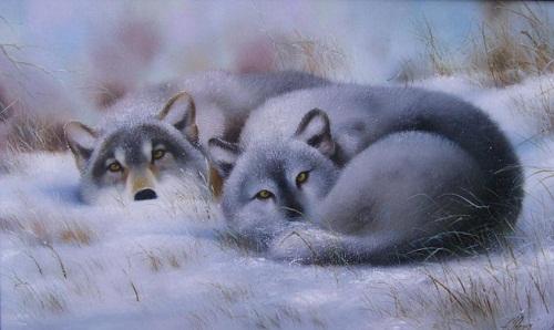 Wolves on snow. Painting by Ukrainian artist animalist Evgeny Reva