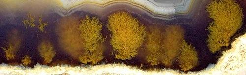 Landscape minerals