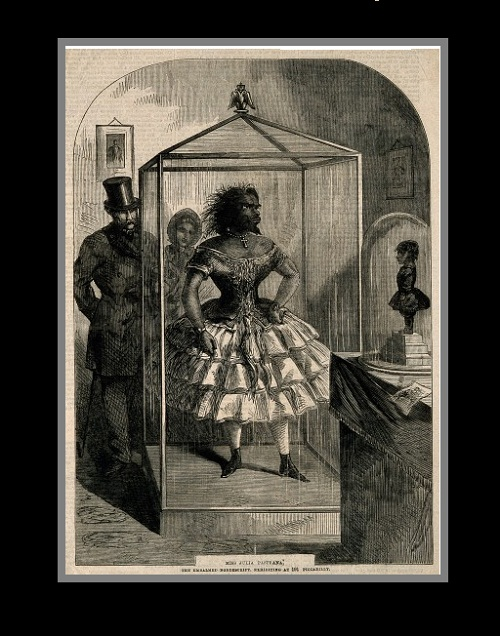 She appeared in a circus freak show, and in the 50s of the 19th century.