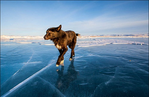 Beautiful nature of Siberia-world deepest lake Baikal
