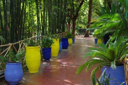Colors in garden design