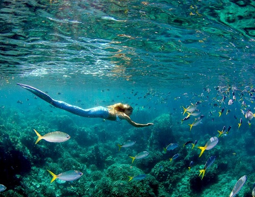 The beautiful free-diver and model travels the world and uses her skills to promote ocean education and conservation.