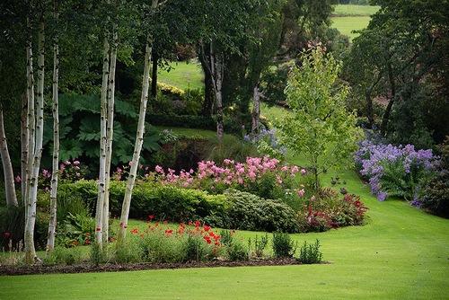 Beautiful Maple Glen garden