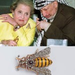 """Albright wore Huge bee to meet with Yasser Arafat. """"It reflected my mood at the time"""". Brooch by unknown designer, 1980"""