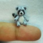 Miniature Gray Raccoon