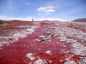 Red Laguna in Chile