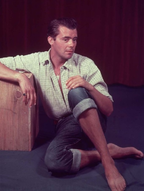 English actor and writer Dirk Bogarde (1921-1999)