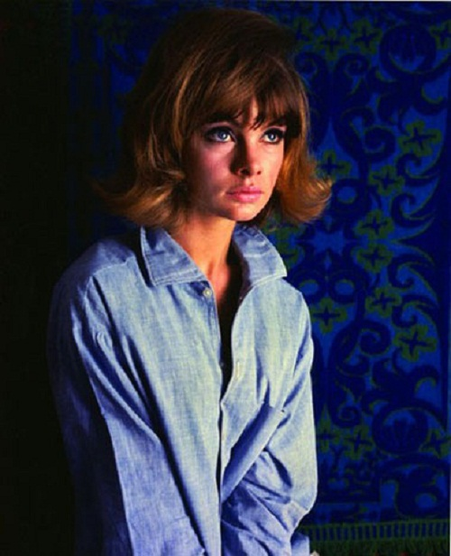 Jean Shrimpton by Ronald Falloon