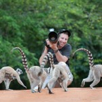 Dale Morris said he was amazed by the vast range of lemur species in Madagascar. There are more than 100 species on the island