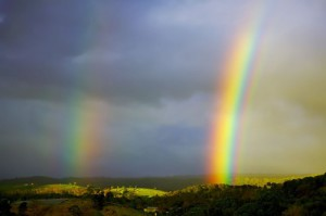 A rainbow, optical and meteorological phenomenon