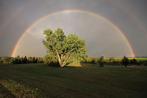 Rainbow, beautiful optical and meteorological phenomenon