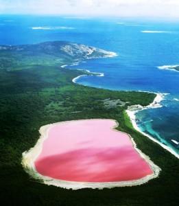 Beautiful pink lake Hillier