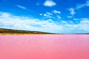 Strange colored Water at Pink Lake, Western Australia