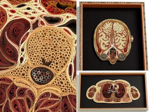 Human body parts by American artist Lisa Nilsson