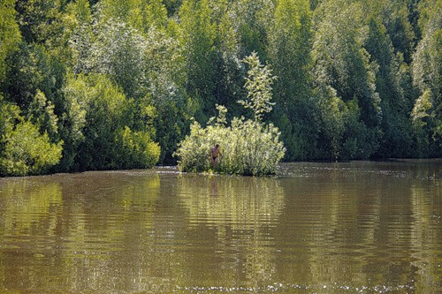 Lake Shaitan and floating islands