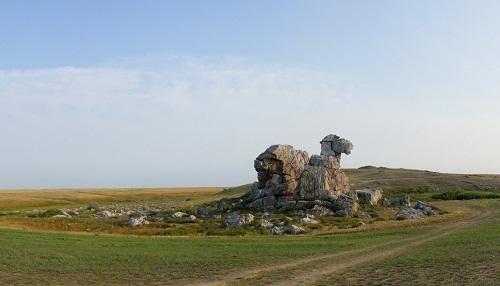 Orenburg Camel Hill