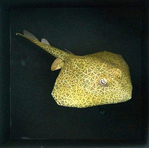'Ray', paper. This is a small model I made in 2011 for the deepsea-creatures' series.