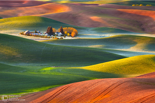 What a beautiful world. Rolling hills. Fine art landscape photographer Zack Schnepf