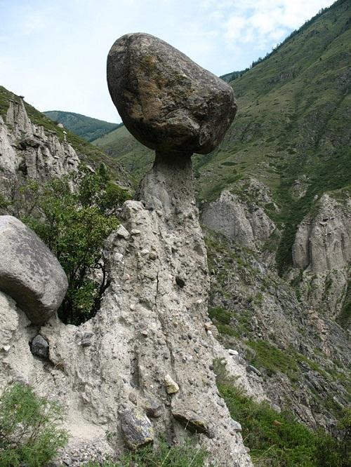 Fungus Stone