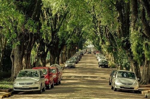 Street Gonçalo de Koval, Brazil