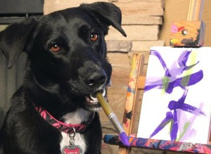 Arbor, the stray dog with the ability to paint.