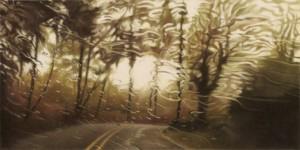 Hyperrealistic pencil drawings by American artist Elizabeth Patterson