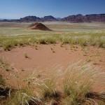 Witches' rings - natural phenomenon of Namibian desert