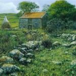 Abandoned Cottage-County Mayo Ireland