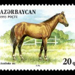 Azerbaijan (1993)