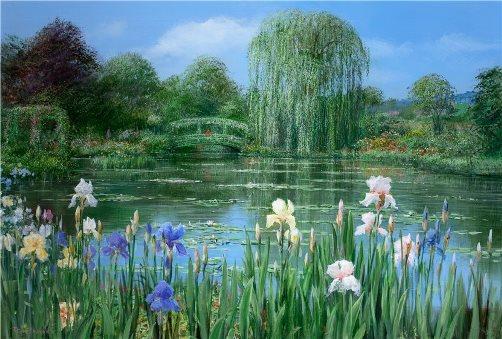 Monet's Pond With Iris Border