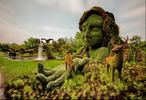 Montreal 2013 competition of horticultural art, Mosaicultures Internationales Montreal 2013 (MIM2013)