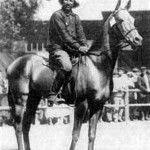 The famous Akhal-Teke stallion Mele Koush born in Russia in 1909