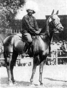 The famous Akhal-Teke stallion Mele Koush born in Russia in 1909